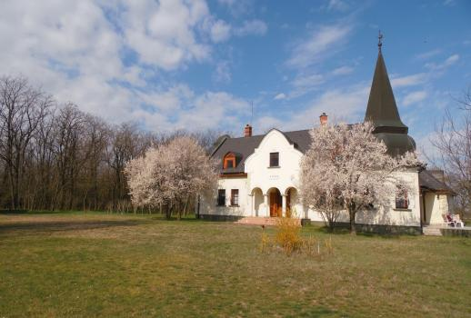 Large property with a castle-like house for sale in the Puszta
