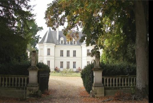 Castle for sale near Chinon