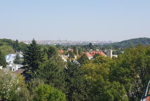 Top penthouse with fabulous view of Vienna in the villa district