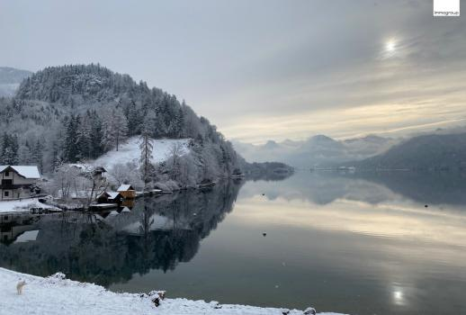 Top vacation home for philosophers and romantics! Landhaus am Wolfgangsee !! Idyllic secluded location! 40 meters lakeshore including bathing area !!!