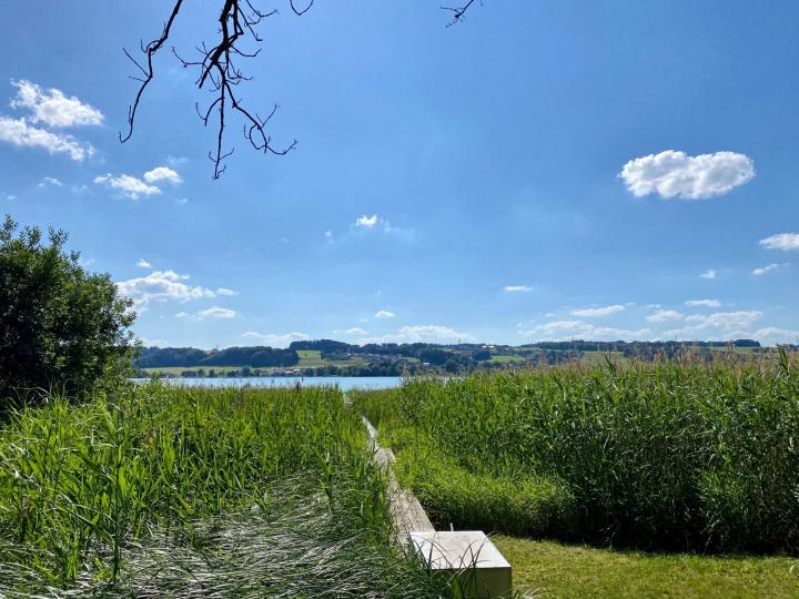 Exclusive lake property with valuable building permit on Obertrumersee