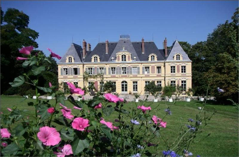castle for sale near paris in france masterhomes. Black Bedroom Furniture Sets. Home Design Ideas